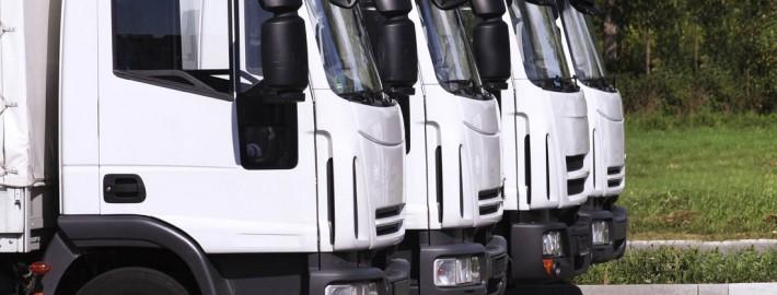 Gebrauchte Nutzfahrzeuge LKWs